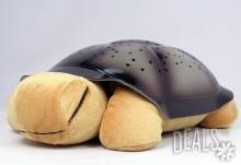 Музикална нощна лампа костенурка